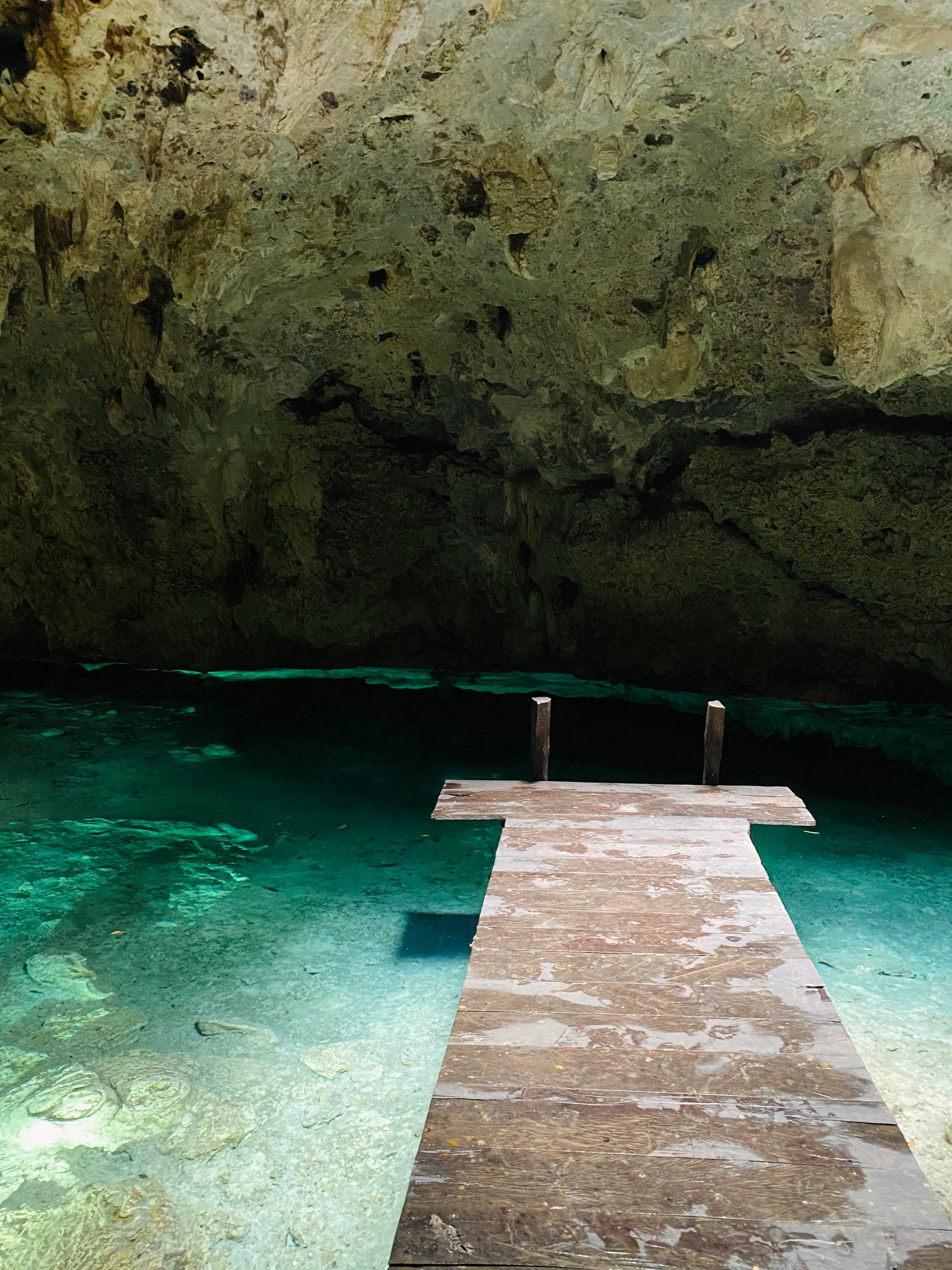 Tulum Mexico Cenote Tour